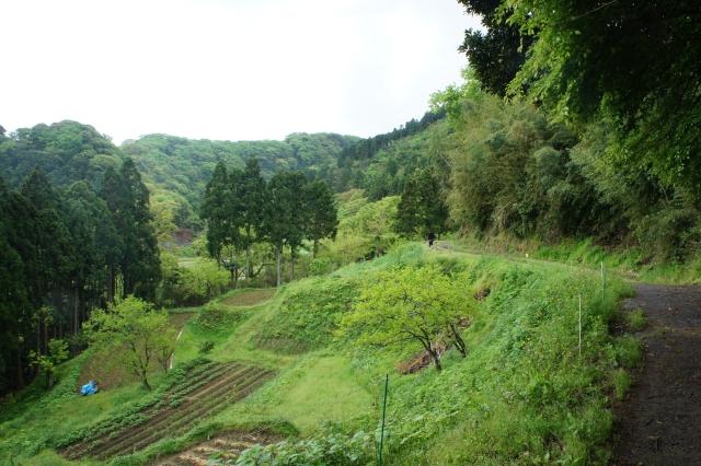 Takeoka_2012_03